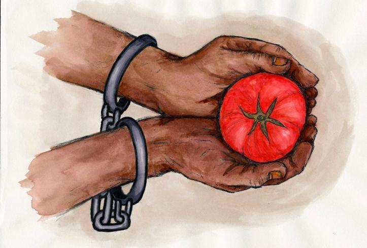 Slavery in Alachua