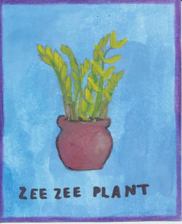 Zeezee plant 001